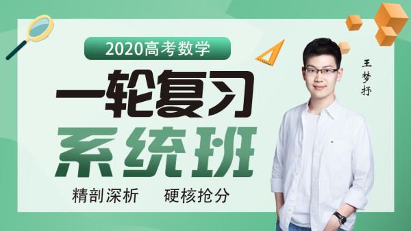 2020王梦抒课程全集,数学高考刷题百度云